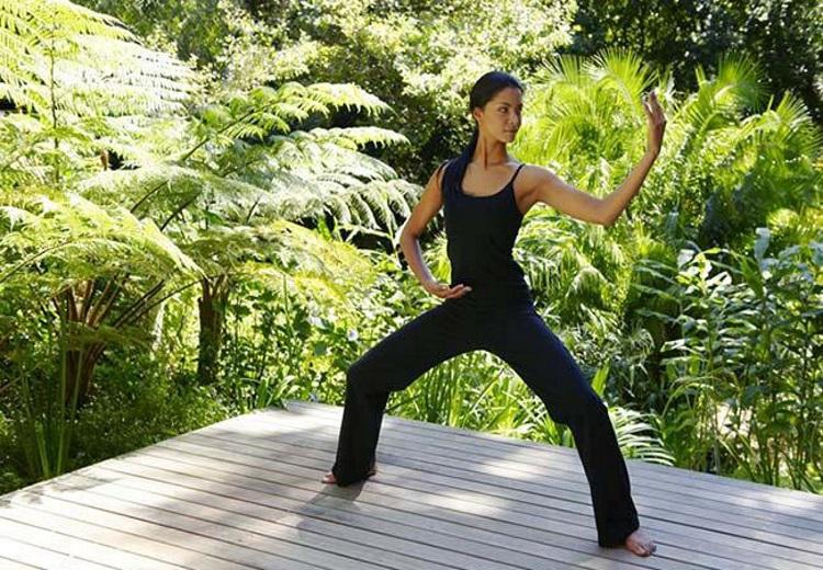 tai chi chuan aumento flexibilidade arte marcial milenar chinesa aumento forca muscular