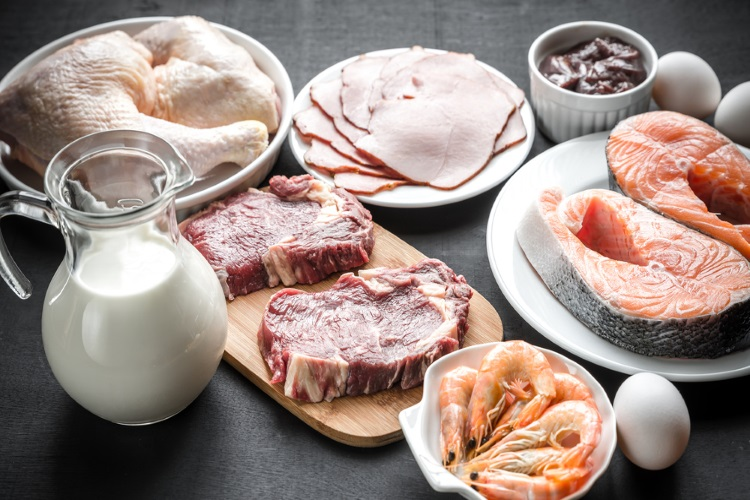 dieta das proteinas puras